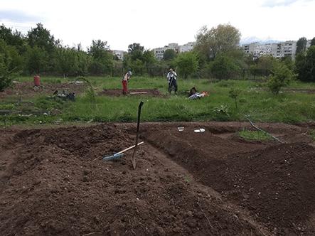 GardeningSlide24